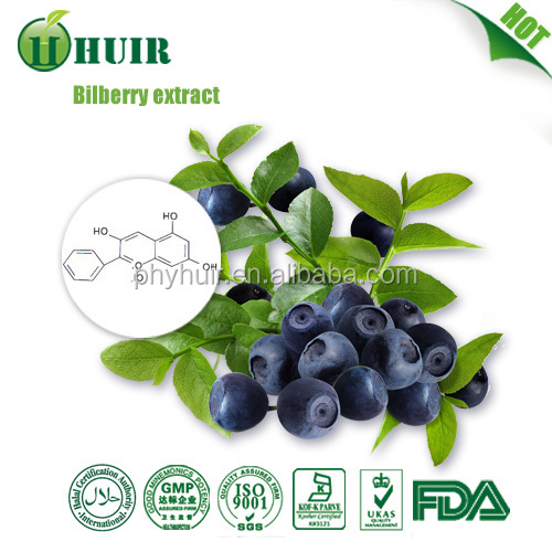 hot selling bilberry extract, free sample bilberry extract,protect eyes and antioxidant bilberry extract with best price