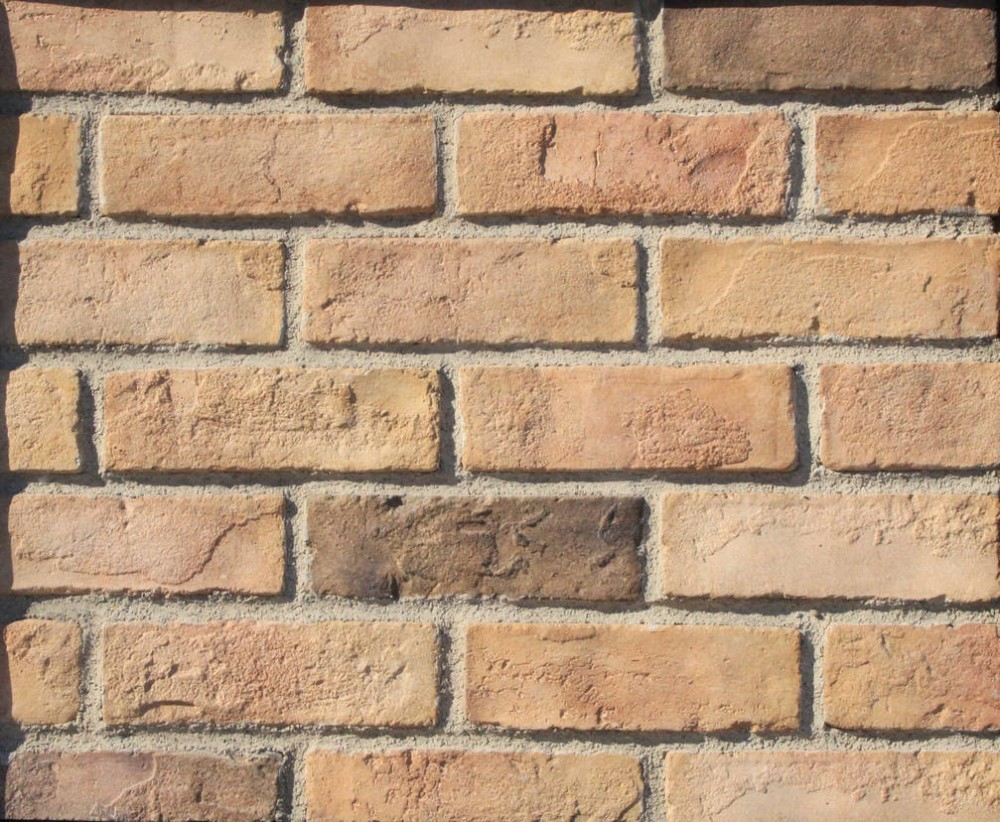 Cultural bricks european style bricks old bricks buy for Brick types and styles