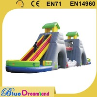 Professional supplier cute animal inflatable tunnel provider