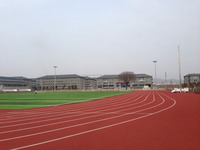 Running Track Material, Rubber Tracks For School And Sports Court