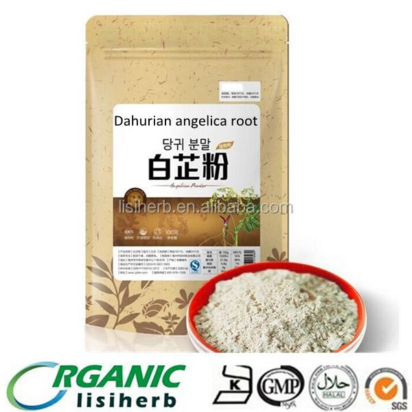 High Quality Natural Angelica dahurica root white powder