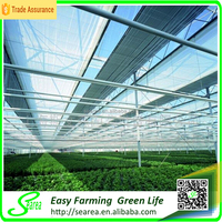 commercial farming PC sheet greenhouse shade green house design