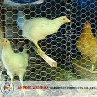 High quality chicken coope hexagonal wire mesh ( anping factory )