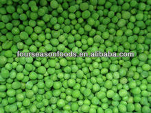 IQF frozen green pea export Four season foods vegetable China