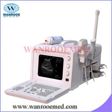 US330 Desktop mode ultrasound scanner for cat and dog pregnancy