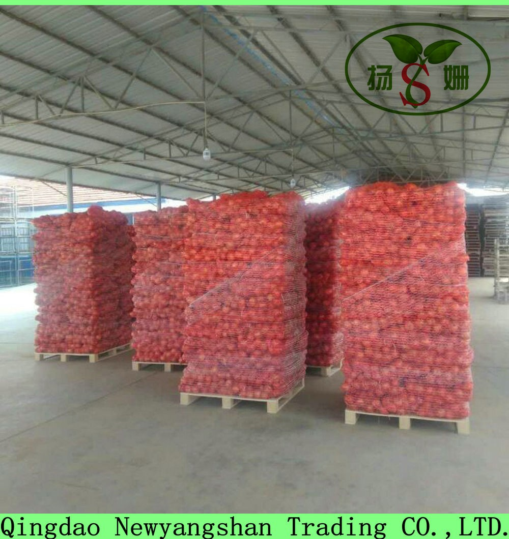 Sell Chinese Fresh Onion Packing In Mesh Bag