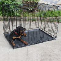Well-suited metal dog show cage
