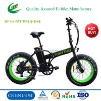 CE EN15194 hybird mountain electric bicycle folding electric bike e bike (TDN00Z)