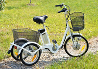 covered electric tricycle with lithium battery to turkey