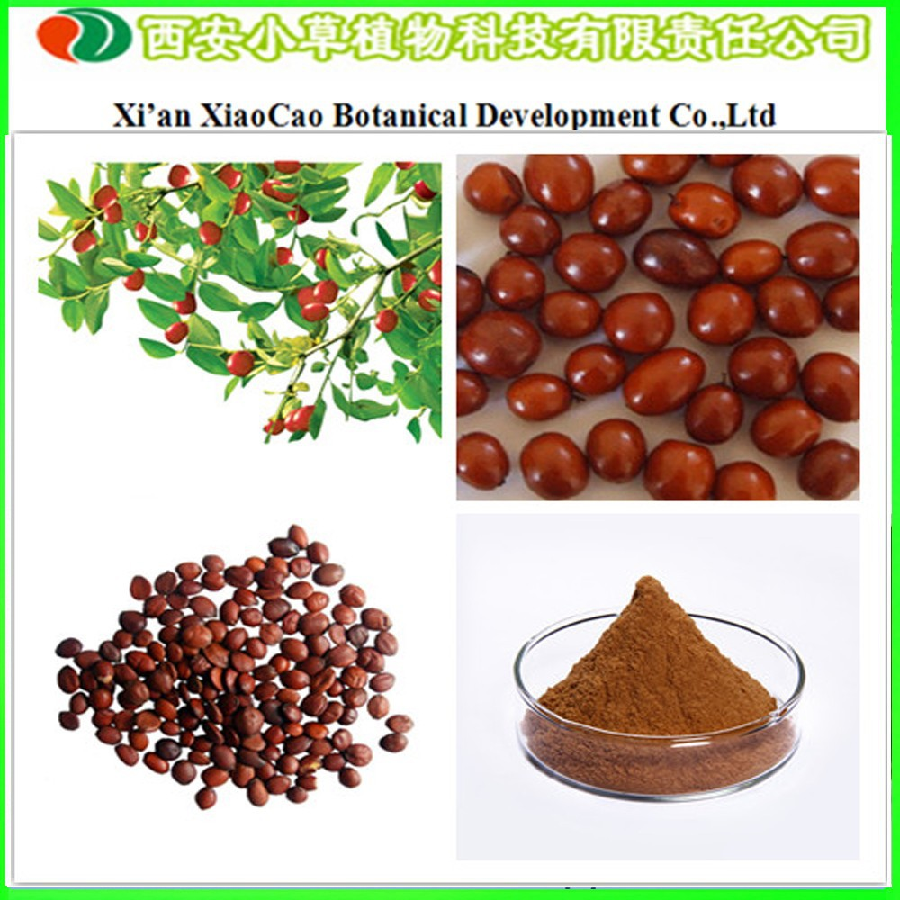 Water Soluble Pure Spine Date Seed Extract/Semen Ziziphi Spinosae Extract/Semen Ziziphi Spinosae