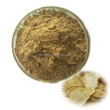 Hot Selling Natural Angelica Extract/Dong Quai extract