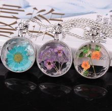 Women Necklace Cute Dried Flower Qualified crystal round perfume Bottle Chain Pendant