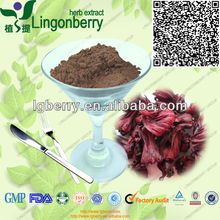 GMP supplier for Roselle extract /hibiscus sabdariffa extract anthocyanin powder