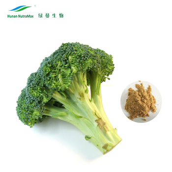 Broccoli Extract Powder Sulforaphane 0.5%-98% Glucoraphanin 0.1%~20% CAS No.: 4478-93-7