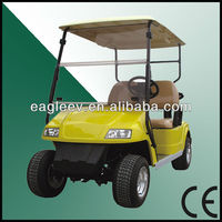 Electric Golf Cart With 2 Seats