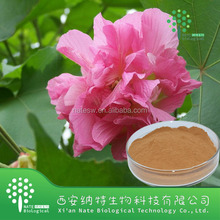 100% Natural Hibiscus extract Flower Extract Anthocyanin 10% 25%