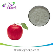 High Quality Natural Green Apple extract slimming dietary apple fiber powder