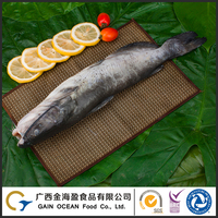 Farm raised fish frozen whole round channel catfish