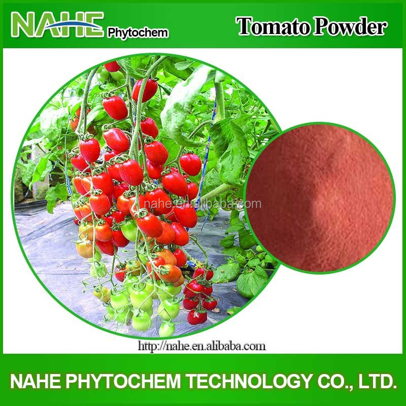 Vegetable powder ISO Factory Dehydrated Tomato Fine Powder