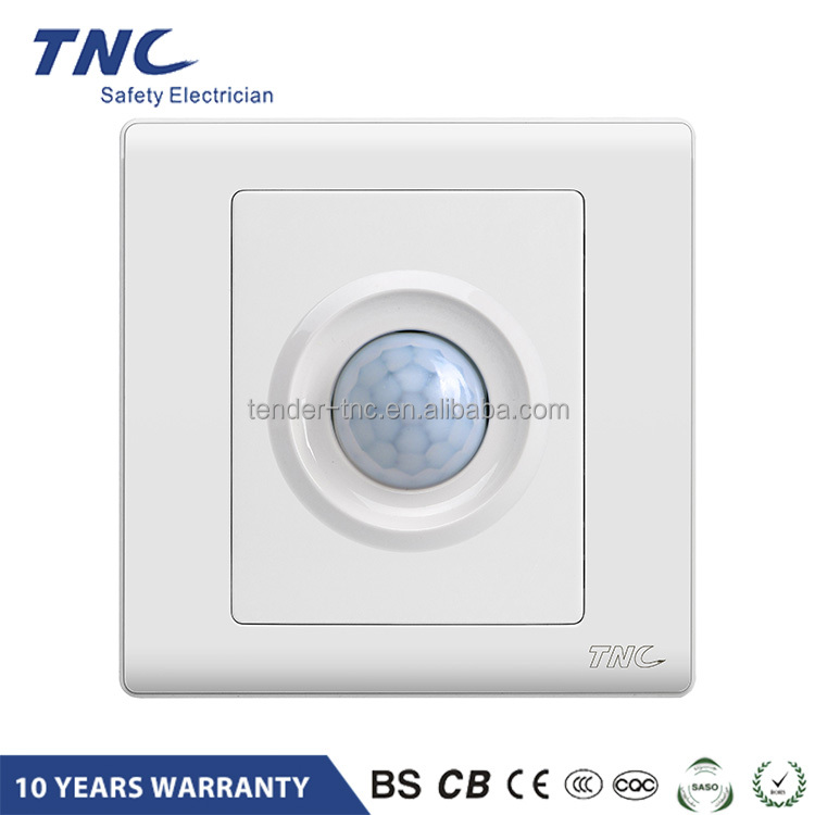 Website Selling time delay motion sensor switch