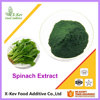 Bulk Organic Natural Spinach Extract Powder 3:1 4:1 10:1 20:1