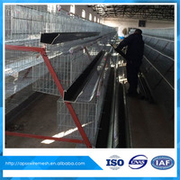 A type Stacked layer type Chicken Cage, Anping Shuxin Manufactory