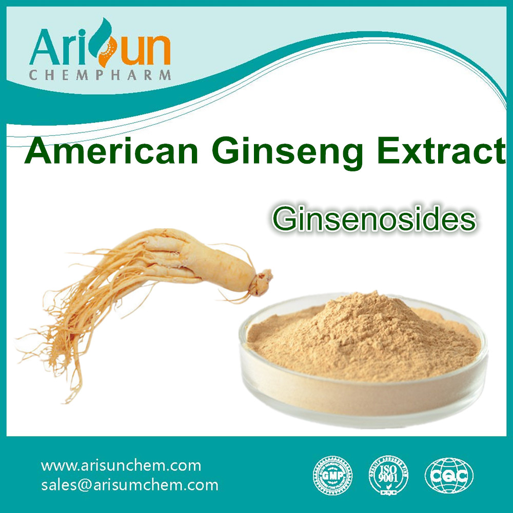 Factory Supply Organic Powder American Ginseng Root Extract