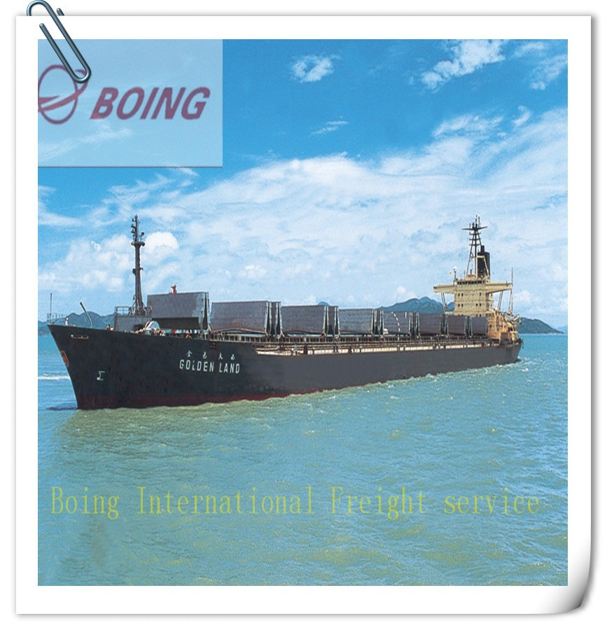 Professional sea cargo from Shenzhen / Shanghai / Foshan / Ningbo to New Zealand - Skype : boingsusan