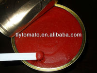 Health food normal open /easy open lid price canned tomato paste for 2015 new products in 210g can