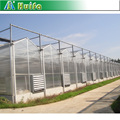 ANLI PLASTIC UV polycarbonate agricultural greenhouses for tomato