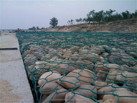 Wholesale PVC Coated Gabion Cage/Galvanized Gabion Box/Gabion Mesh with discount price