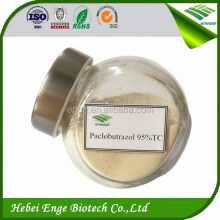 Paclobutrazol 95% Tech Grade in plant growth regulator