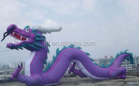 inflatable giant Chinese dragon,inflatable long Chinese dragon