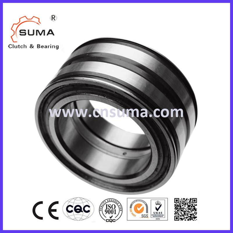 SL18 Full Complement Cylindrical Roller Bearing Made in China SL185016 SL185017