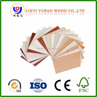 China supplier Commercial Position plywood flush door