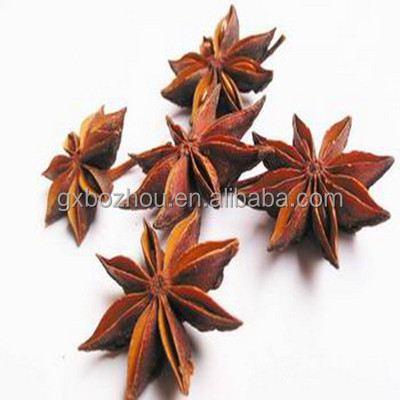 Wide Flower Size Star Aniseed