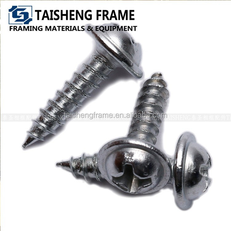 TS-K289 Silver color <strong>screws</strong> with flange head/ nickel philips head <strong>screw</strong>