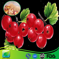 Natural Pure and High Quality hawthorn berry/leaf extract especially for your family health