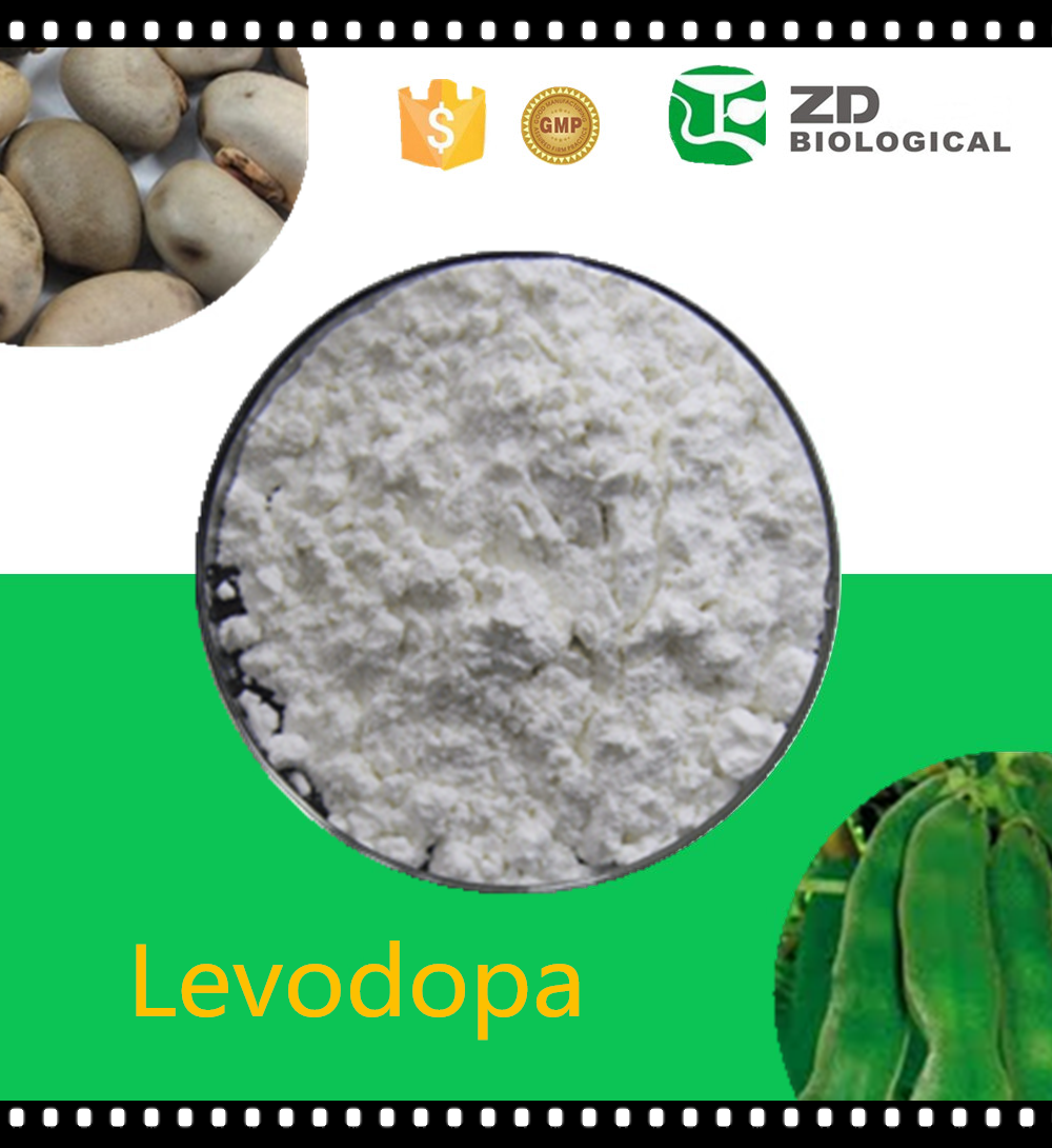 Herbal Sex Medicine Levodopa 98% 99% L-Dopa Mucuna Pruriens Extract