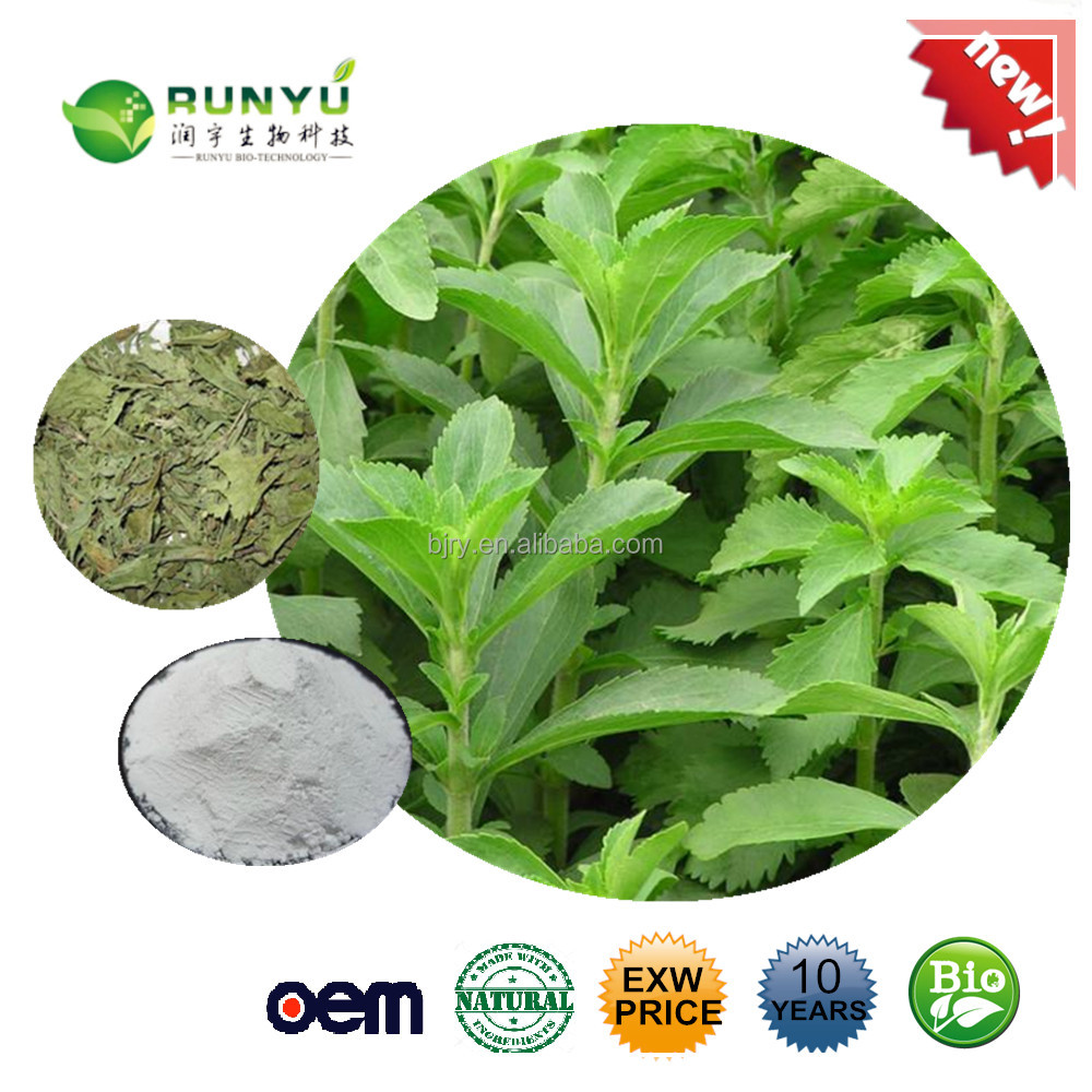 Free Sample low calorie pure natural Stevia plant Stevia extract 80%-98%