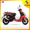 China Euro IV sport and patent 25km/h and 45km/h gas scooter electric scooter motorcycle and parts