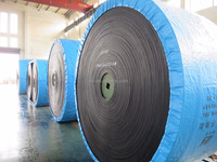 Polyester ( EP) Conveyor Belt Molded Edge