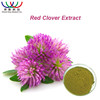 free sample for trial HACCP KOSHER FDAHALAL supplier red clover extract hormone replacement therapy isoflavone