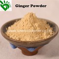 Good Quality Ginger Powder from Ginger Supplier