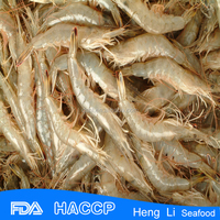 HL002 frozen seafood wild catch red shrimp