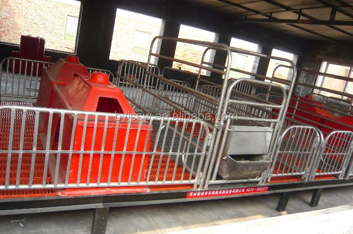 Hot Sale Equipment For Pig Breeding in Pig Farm