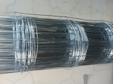 hot selling!!!galvanized welded wire mesh factory cheap price(Tommy,Whatsapp/wechat:+86-18032821161,Skype:zheng.tommy1)