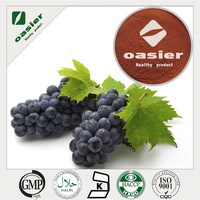 China supply plant extract/Extrato de planta/Grape Seed Extract/95%OPC/95%PAC
