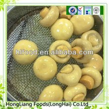 Canned Whole Mushroom In Brine For Sale