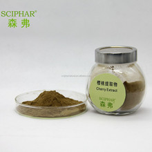Acerola Cherry Extract Powder VC 50%